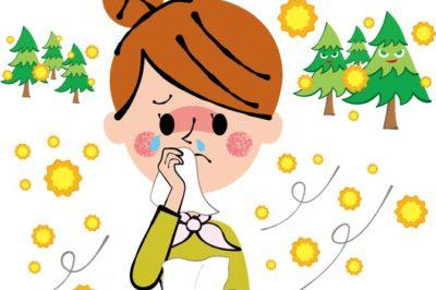 花粉の季節到来 ! 窓まわりからできる 「 花粉対策 」