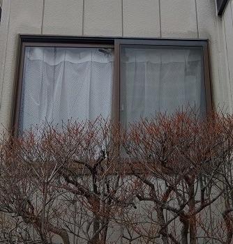 網戸のなかった窓に、新しく網戸の取り付けリフォーム