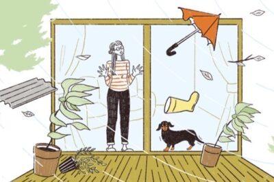 台風が来る前に備えておきたい窓割れ対策